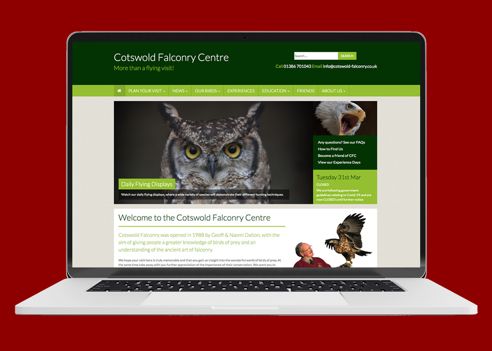 web cotswold falconry centre